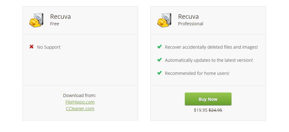 difference between recuva free and professional