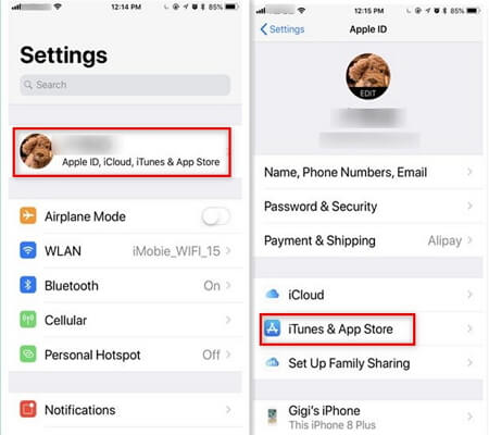 10 Tips to Fix App Store Not Working on iPhone in iOS 12/11