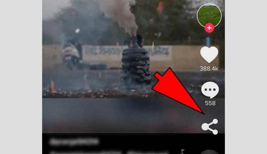share tiktok videos to whatsapp