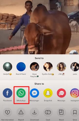 copy tiktok videos to whatsapp