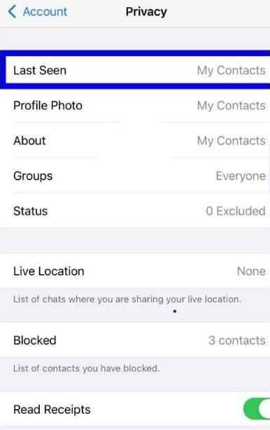 hide whtasapp online status