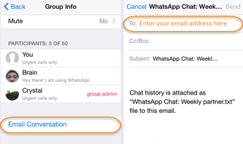 whatsapp chat history